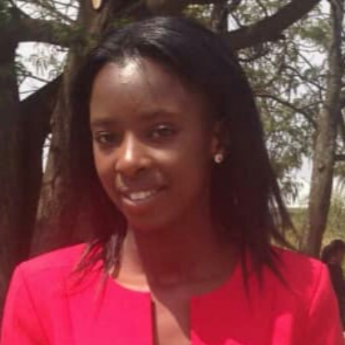 Read more about the article New Project Coordinator in Zimbabwe