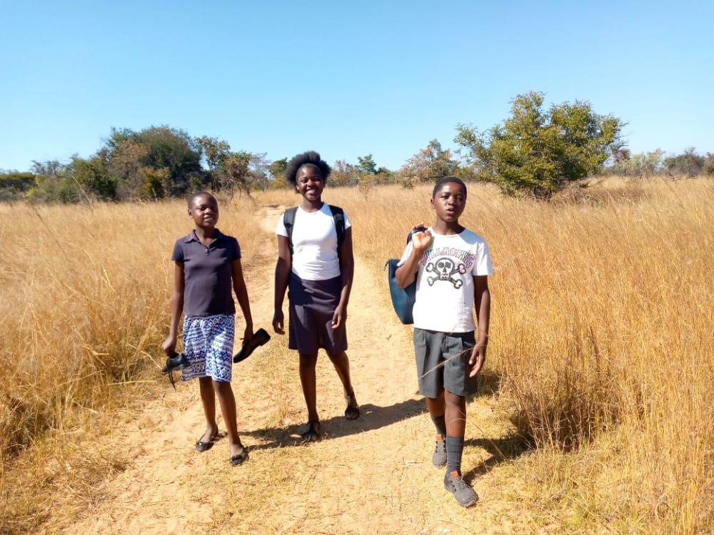 Three pupils walking between fields